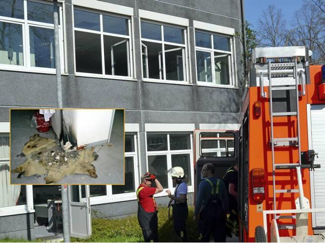 Vom brennenden Papierkorb, der auch Schäden an der Wand und auf dem Boden hinterließ (kleines Foto), blieb kaum etwas übrig.