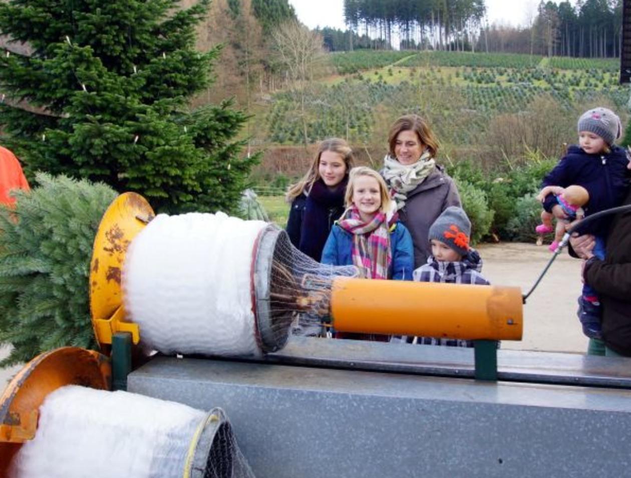 Weihnachtsbaum Selber Schlagen Sauerland.Altenaffelner Weihnachtsbäume Sogar In Leer Neuenrade