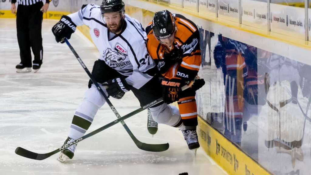 Grizzly Adams Wolfsburg - Nürnberg Ice Tigers