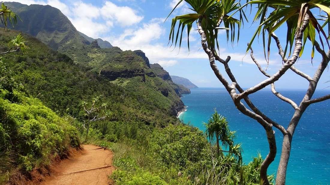 Und als ob das nicht schon genug Häuser währen, kaufte Zuckerberg 2014 auf der Pazifik-Insel Kauai (s.o.) zwei Grundstücke für 100 Millionen Dollar - eine Plantage sowie einen Sandstrand.