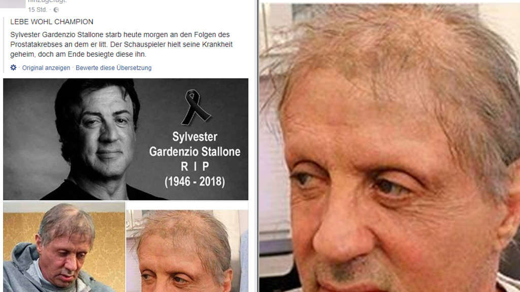 Lebt Sylvester Stallone Noch