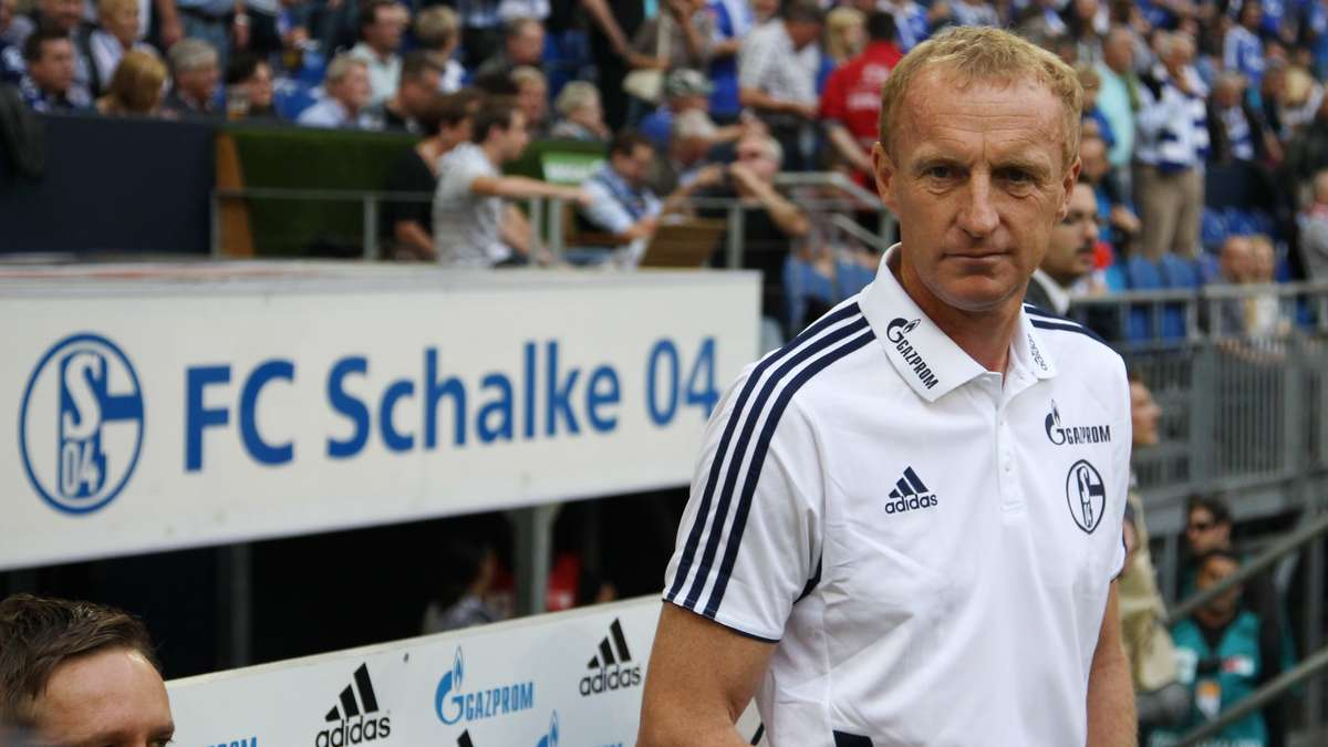 Schalke Co Trainer