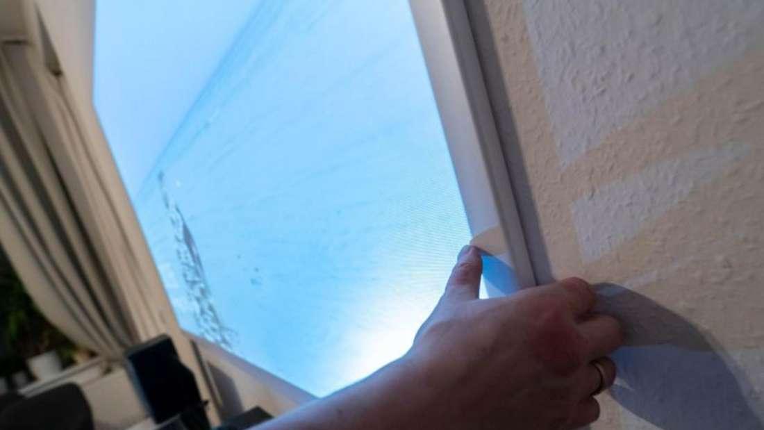Rauhfaser-Tapete an der Wand: Ein klarer Fall für eine Leinwand - und damit ein besseres Bild. Foto: Florian Schuh