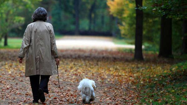 ce6be512cc039e Frau macht mit Hund Spaziergang - nur einer der beiden kehrt lebend zurück