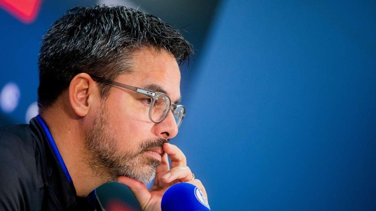 Schalke Mainz Aufstellung