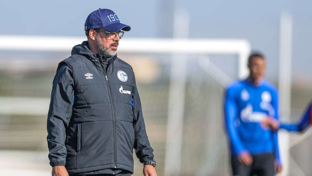 Schalkes Trainer David Wagner.