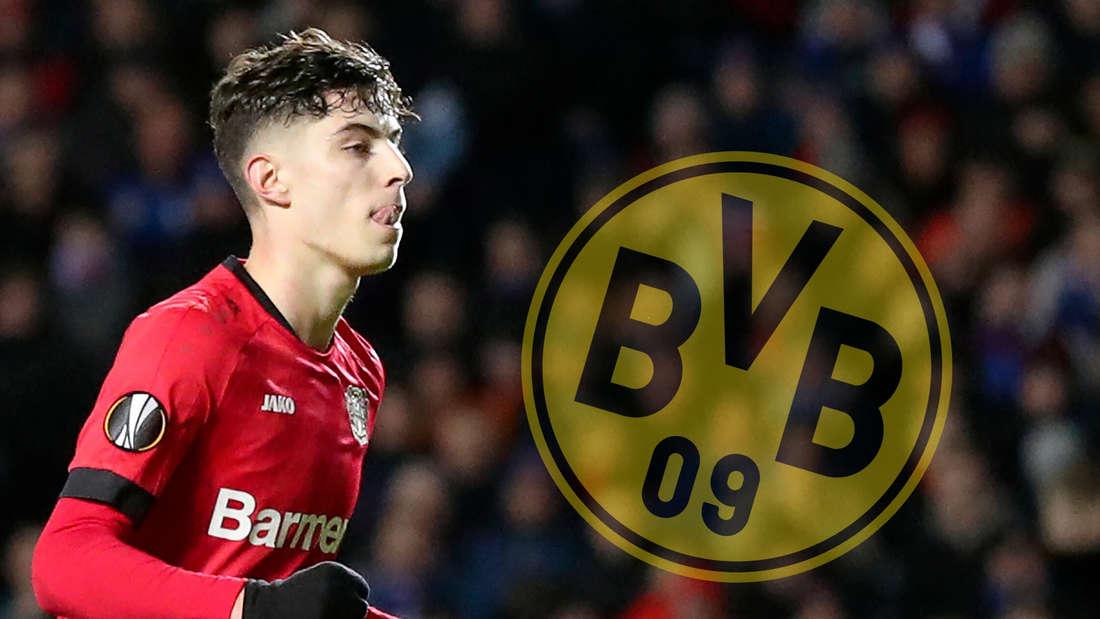 Kai Havertz von Bayer 04 Leverkusen könnte zum BVB nach Dortmund wechseln.
