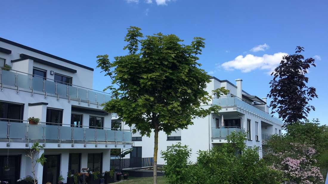 Wohnprojekt auf der früheren Industriebrache HalverRollen von Steinbach & Dahlhaus.